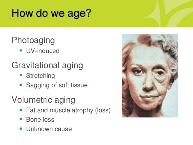 skin aging causes